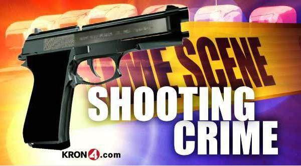 shooting -gun-generic 2_133059