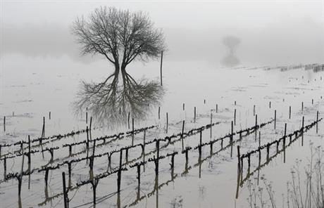 russian river flooding_476109