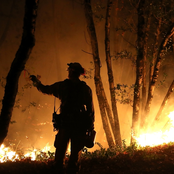 Multiple Wildfires Destroy Homes, Threaten California Wine Country_650004