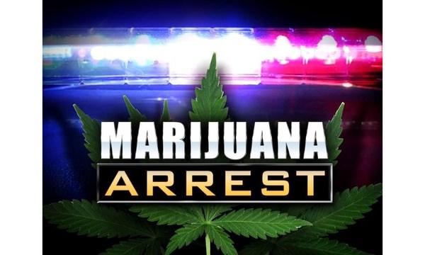 marijuana-arrest-graphic-pot
