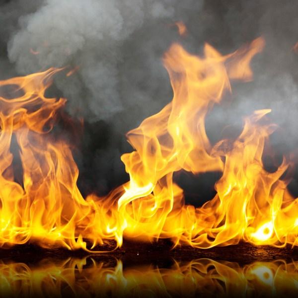 graphic FS Fire 2_1523150793726.jpg.jpg