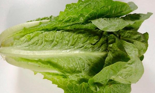 romaine-lettuce_1527868926038_44150412_ver1.0_640_360_1530225170040.jpg