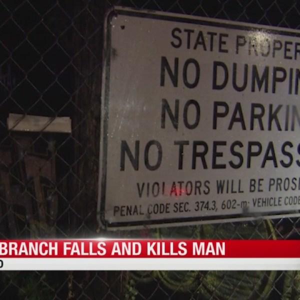 CHP: Tree branch falls on, kills man in Oakland during storm