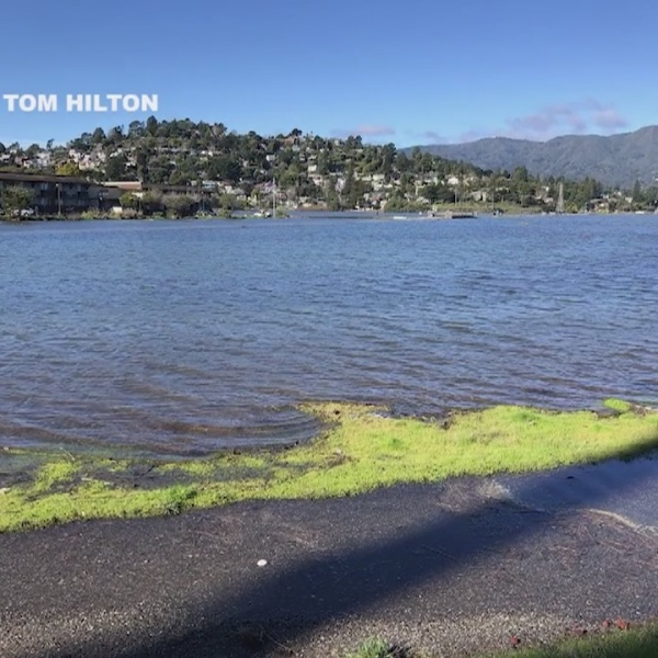 Flooded roads, parking lots in Marin County amid King Tides