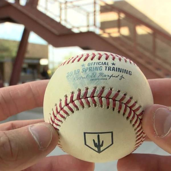 Close up look at an official Spring Training baseball