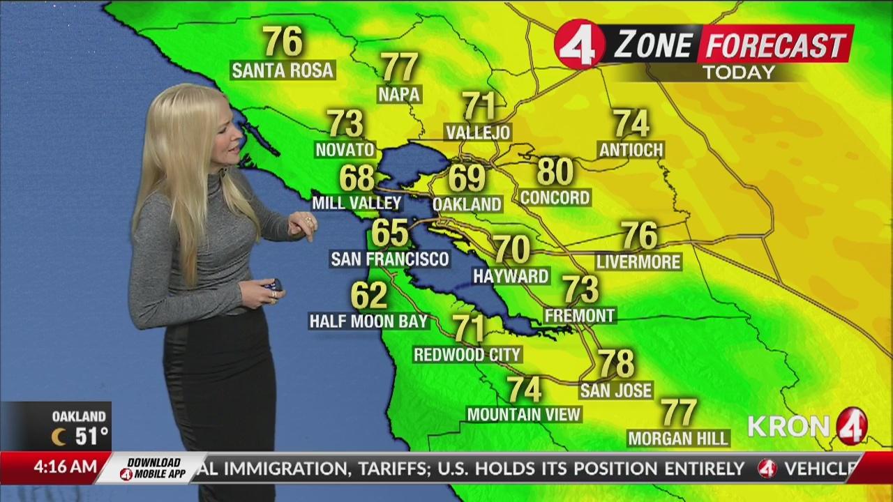 Friday Weather Forecast