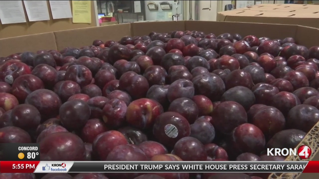 Local food banks helping East Bay families in need