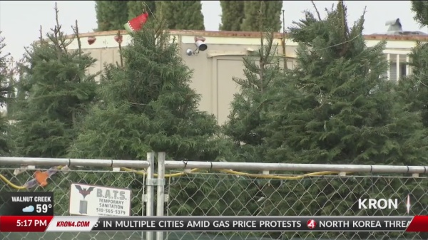 G BiZ - Oakley Boy Scout's Scammed Out Of $5,000 By Xmas Tree Contractor