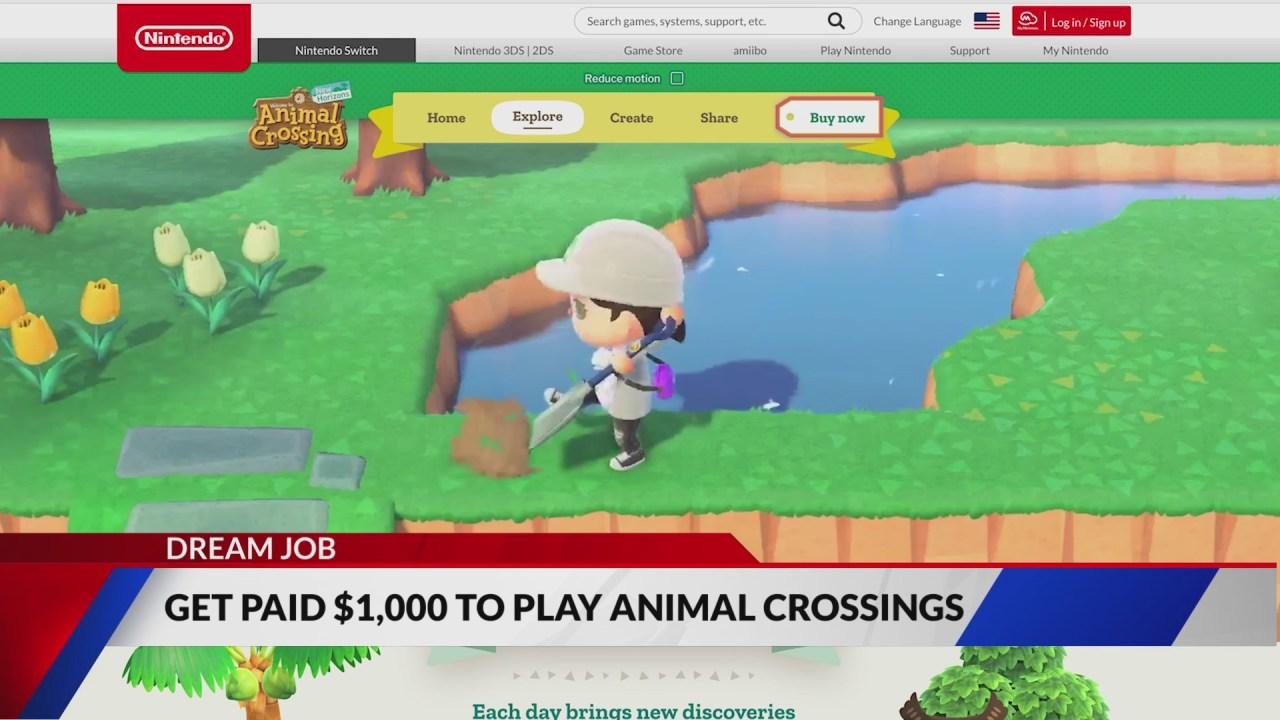 Dream job: Company providing $1,000 to play Animal Crossing - KRON4 thumbnail