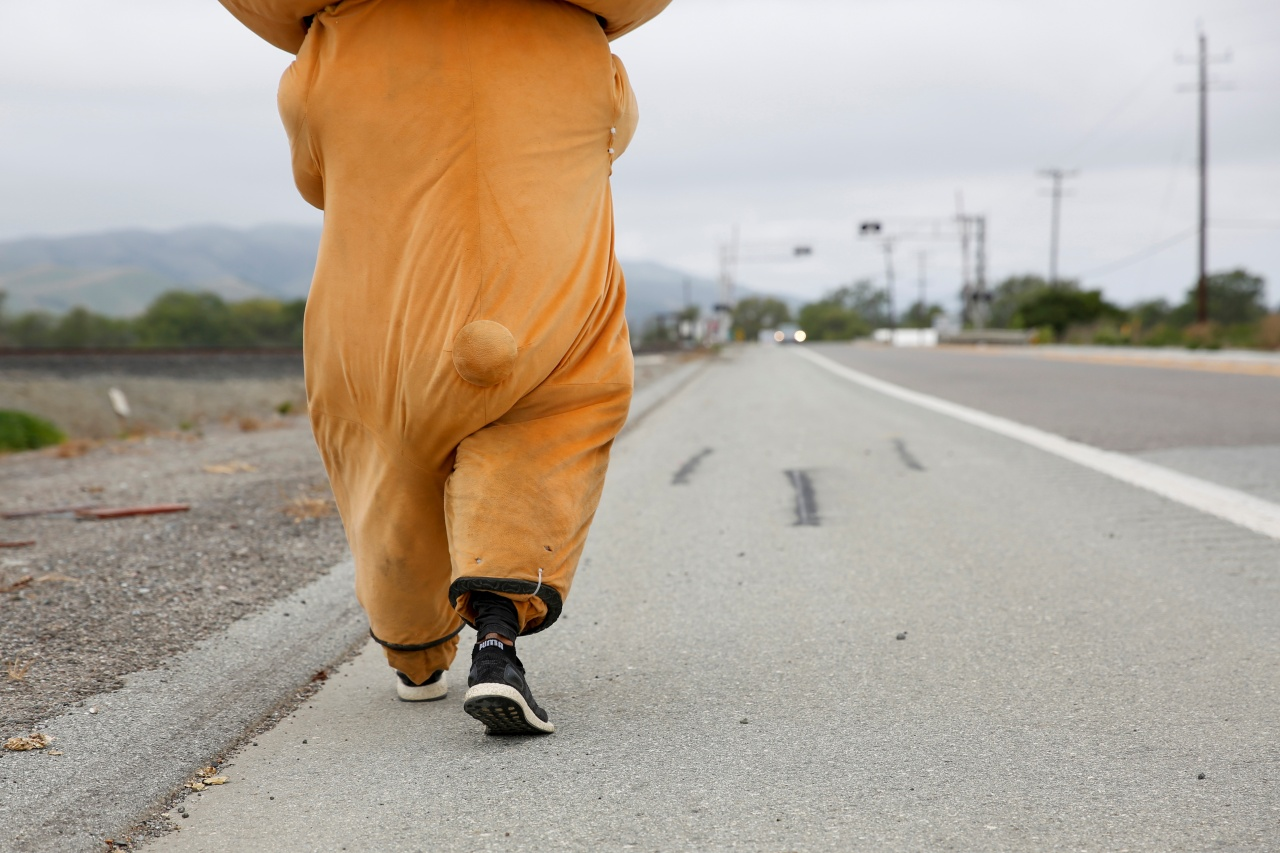 Meet the man in a bear suit walking from Los Angeles to San Francisco