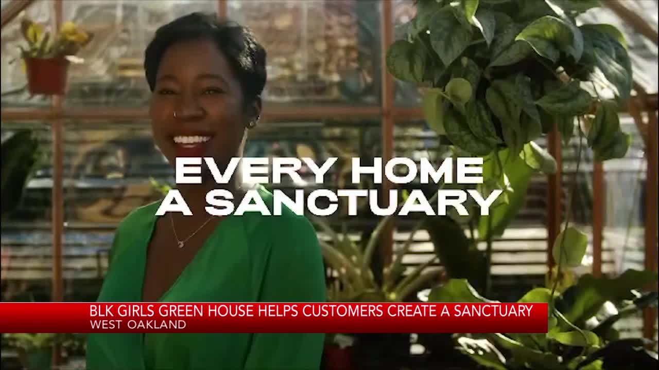 BLK Girls Green House serves as plant sanctuary for community