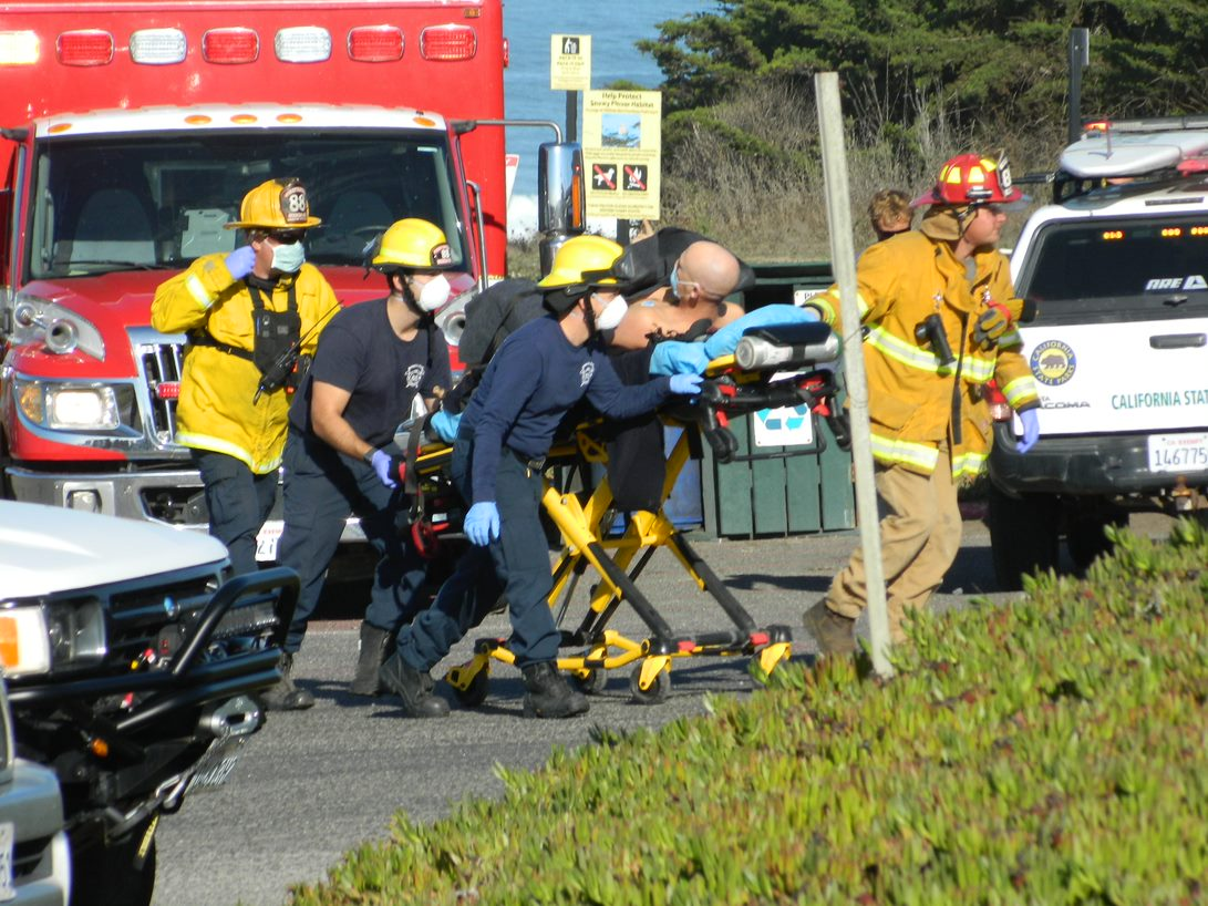 Surfer attacked by shark near Bodega Bay